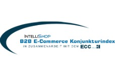B2B E-Commerce Konjunkturindex: Servicefunktionen