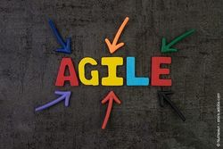 Agile Business
