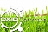 OXID Commons 2012 - Best Solution Award
